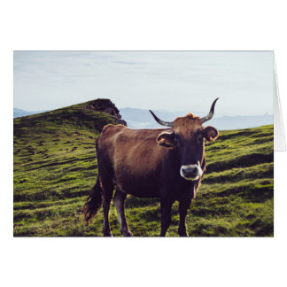 Bovine Cow on Beautiful Landscape Card