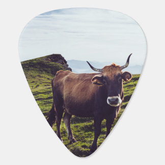 Bovine Cow on Beautiful Landscape Guitar Pick