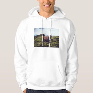 Bovine Cow on Beautiful Landscape Hoodie
