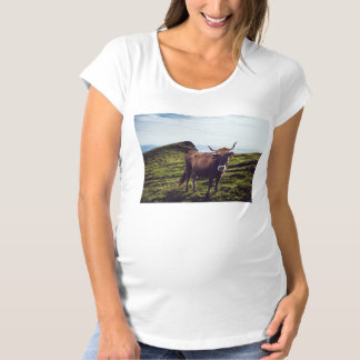 Bovine Cow on Beautiful Landscape Maternity T-Shirt