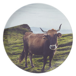 Bovine Cow on Beautiful Landscape Plate