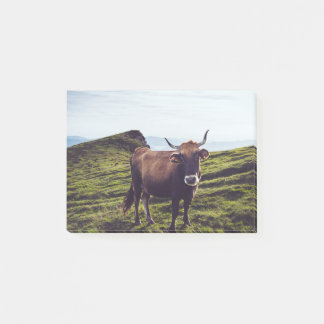 Bovine Cow on Beautiful Landscape Post-it® Notes
