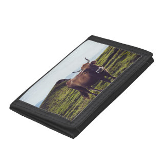 Bovine Cow on Beautiful Landscape Trifold Wallets