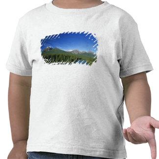 Bow River near Banff National Park in Alberta T Shirts