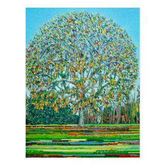 Bow Tree Autumn Postcard