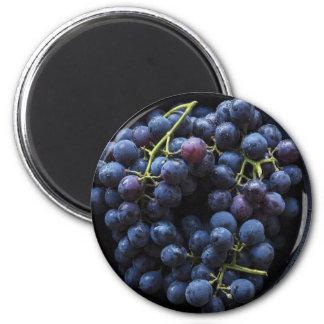 Bowl of Blueberries Fun Food Magnet