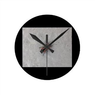 Box Elder Beetle Clock