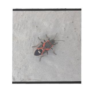 Box Elder Beetle Notepad