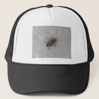 Box Elder Beetle Trucker Hat