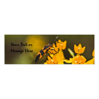 Box Elder Bug Bookmark Double-Sided Mini Business Cards (Pack Of 20)
