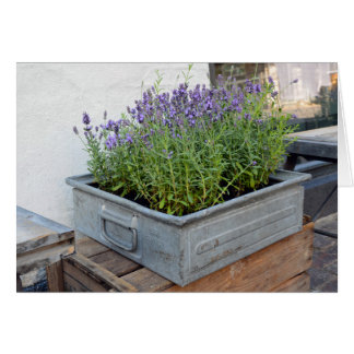 Box of Lavender in Flower Market Card