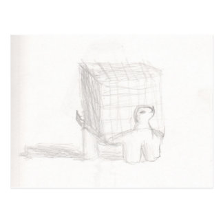 box turtle cube drawing Eliana Postcard
