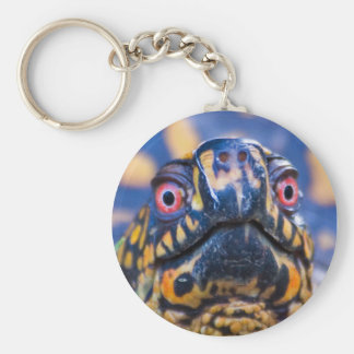 Box Turtle Keychain