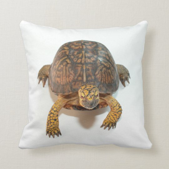 Box Turtle MoJo Pillow
