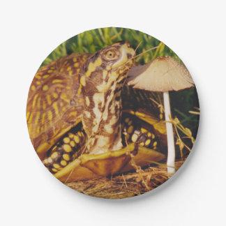 Box Turtle Mushroom Paper Plate