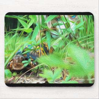 Box Turtle w/ Australian Shepherd Mousepad