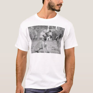 Boxer and bloodhound t-shirt