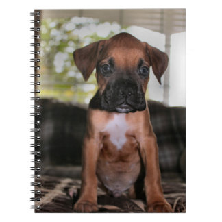 Boxer baby notebook