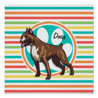 Boxer Bright Rainbow Stripes Poster