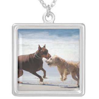 Boxer Doberman - Play Date at the Beach Necklace