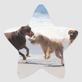 Boxer Doberman - Play Date at the Beach Star Sticker