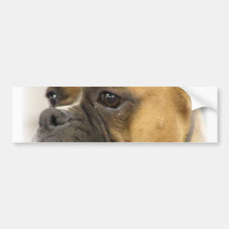 Boxer Dog Face Bumper Sticker