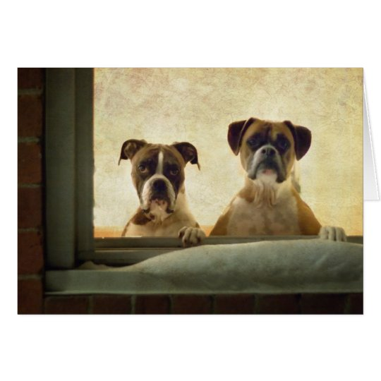 Boxer Dog Note Card - Christmas or Greeting Card