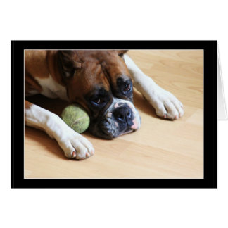 Boxer dog notecard