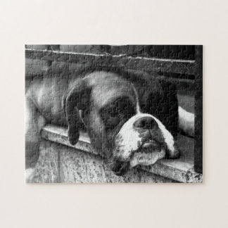 Boxer Dog On Windowsill Jigsaw Puzzle