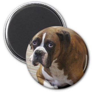 Boxer Dog Round Magnet