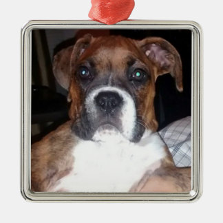 BOXER DOG TRUE COMPANION ornament