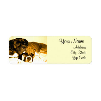 Boxer Dogs Address Labels