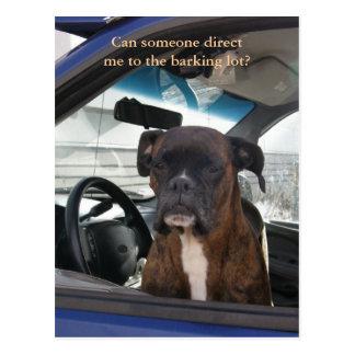 Boxer in the Driver's Seat in Dutch Harbor, AK Postcard