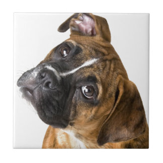 Boxer Love Tile