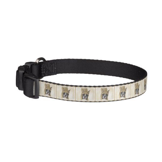 Boxer Pet Collar