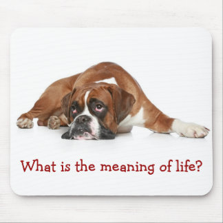 Boxer Pondering the Meaning of Life Mousepad