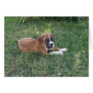 Boxer Pup Card