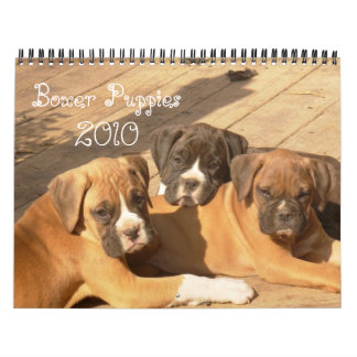 Boxer Puppies 2010 Calendar