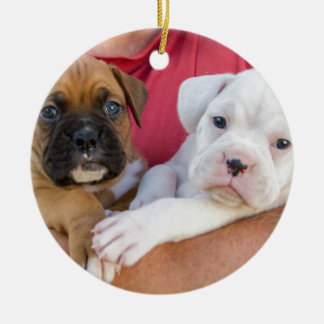 Boxer Puppies Ceramic Ornament