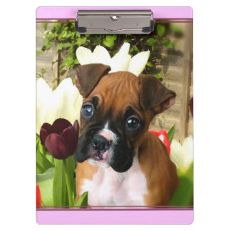 Boxer puppy  and tulips clipboard