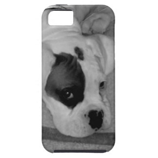 Boxer puppy case for the iPhone 5