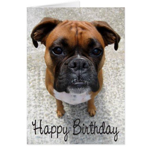 Boxer Puppy Dog  Happy Birthday Card  - Verse