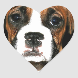 Boxer puppy dog heart sticker