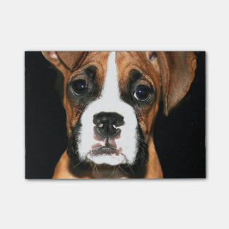 Boxer puppy dog post-it notes