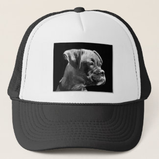 Boxer puppy hat