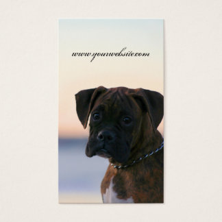 Boxer puppy in evening sky business cards