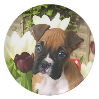Boxer puppy in tulips decorative plate