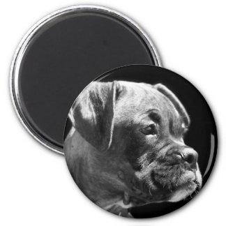 Boxer puppy round magnet