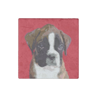 Boxer puppy stone magnets