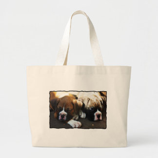 Boxer pups bag